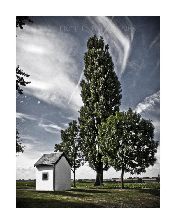 paysage chapelle arbre autoroute peuplier